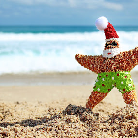 starfish painted as Santa on beach
